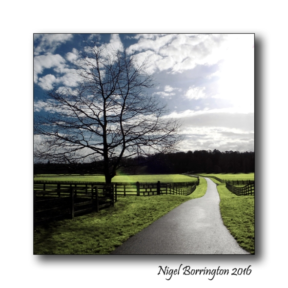 Irish Landscapes Mount Juliet Estate county Kilkenny Nigel Borrington