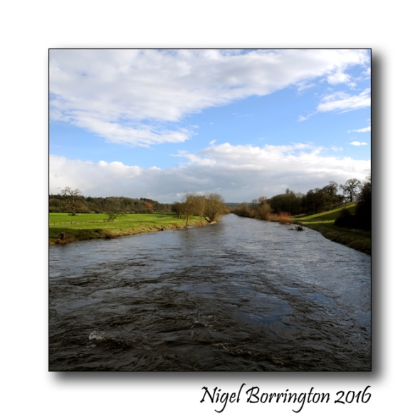 Mount Juliet Estate river Kilkenny Nigel Borrintgon