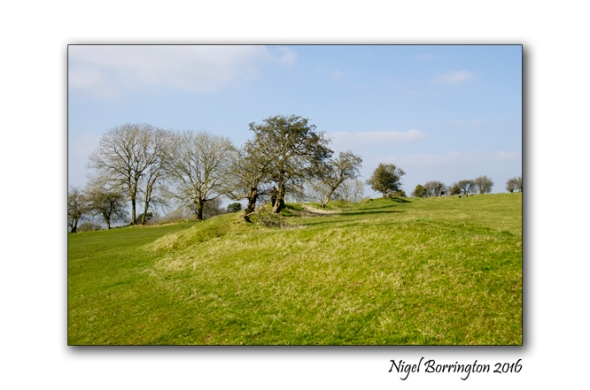 Hill_of_Tara_Nigel_Borrington_05