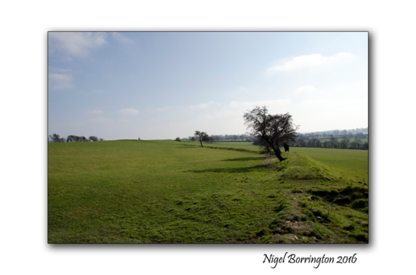 Hill_of_Tara_Nigel_Borrington_07