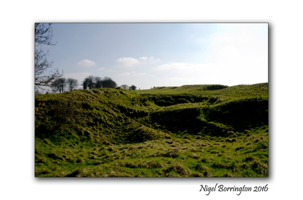 Hill_of_Tara_Nigel_Borrington_11