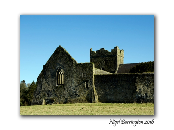 Kilcooley Abbey Nigel Borrington 1