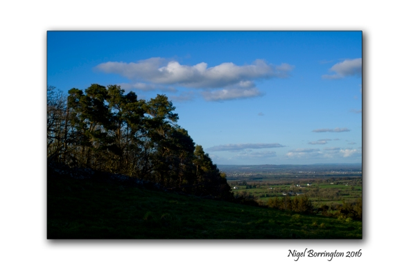 Kilkenny Landscapes March 2016 Nigel Borrington 02