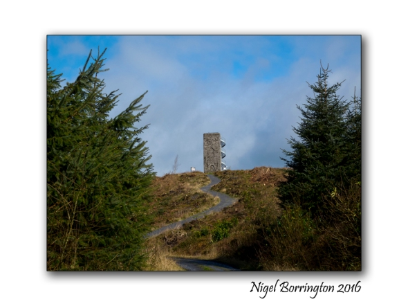Wellington Tower, the Crag Grange Tipperary Nigel Borrington 1