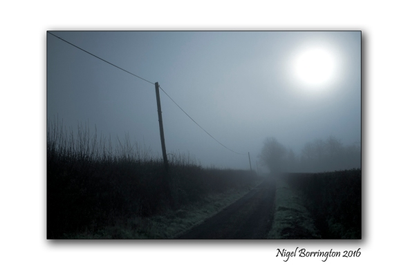Foggy Mornings  Kilkenny Nigel Borrington