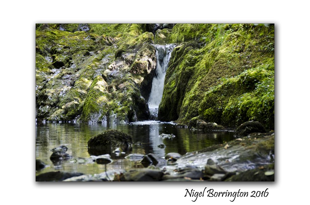 Springtime at the River Irish landscapes Nigel Borrington