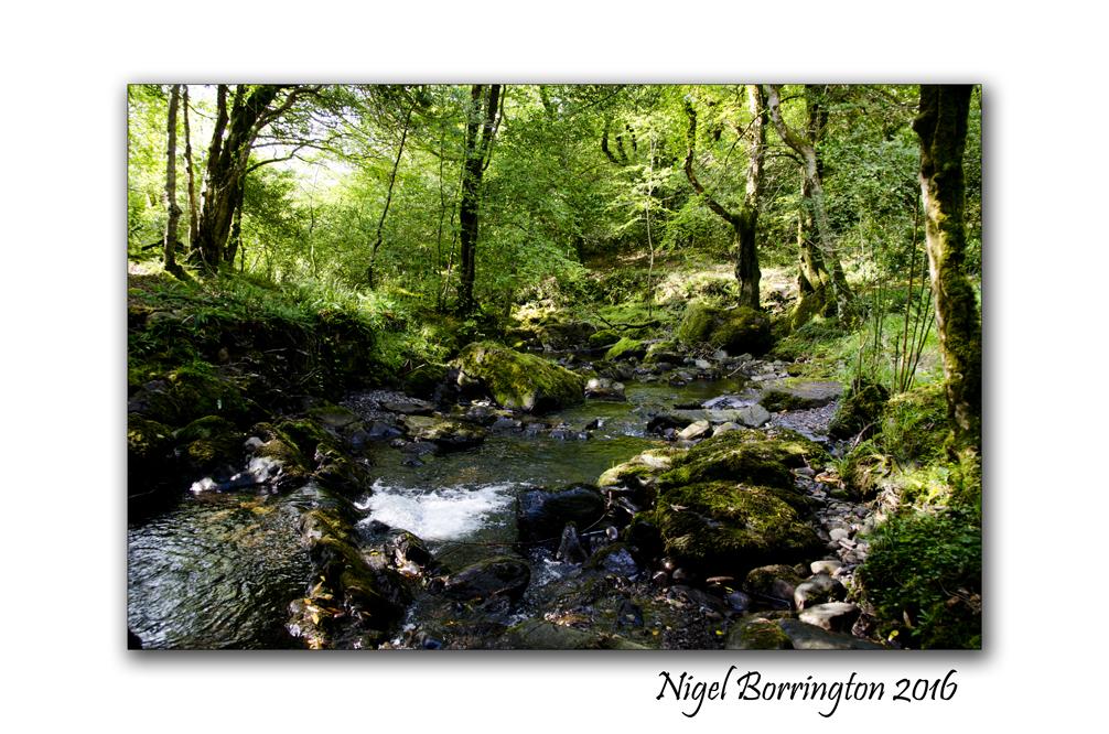 The Rivers source Nigel Borrington 02