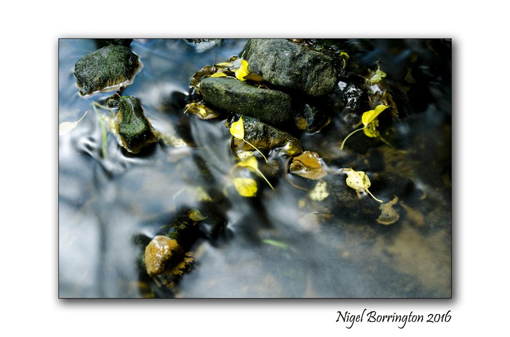 The Elements Water Nigel Borrington 01