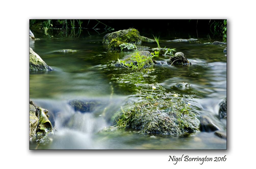 The Elements, Water Nigel Borrington