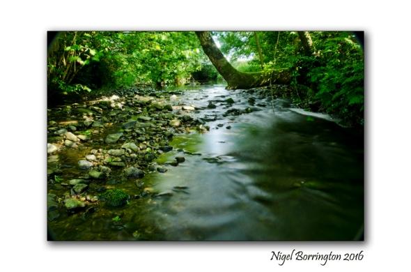 The Elements Water Nigel Borrington 06