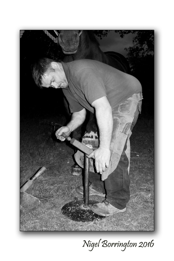 The Farrier Kilkenny  Nigel Borrington