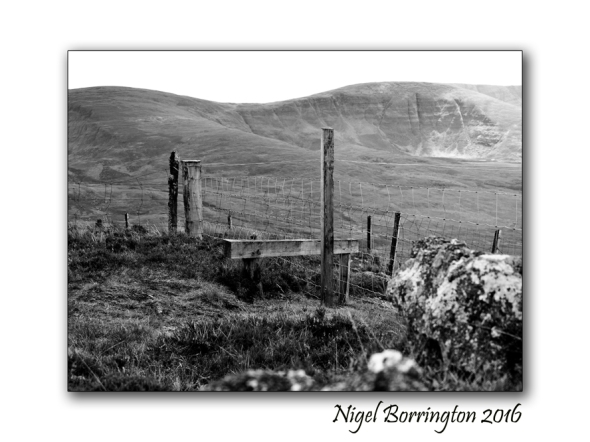 Borders and Fences Nigel Borrington