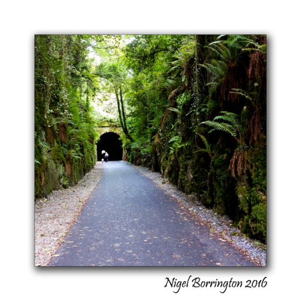 Waterford Deise Greenway 03 Nigel Borrington