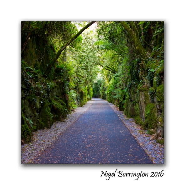 Waterford Deise Greenway 07 Nigel Borrington