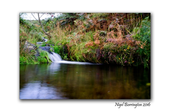 Waters flow from the mountain spring Slievenamon Tipperary Nigel Borrington