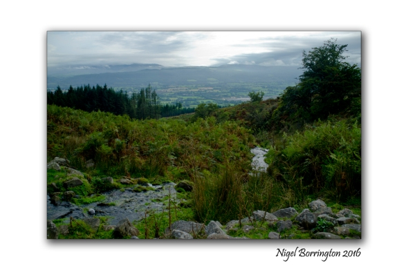 flow-from-a-spring-on-the-mountain-of-slievenamon-nigel-borrington-04