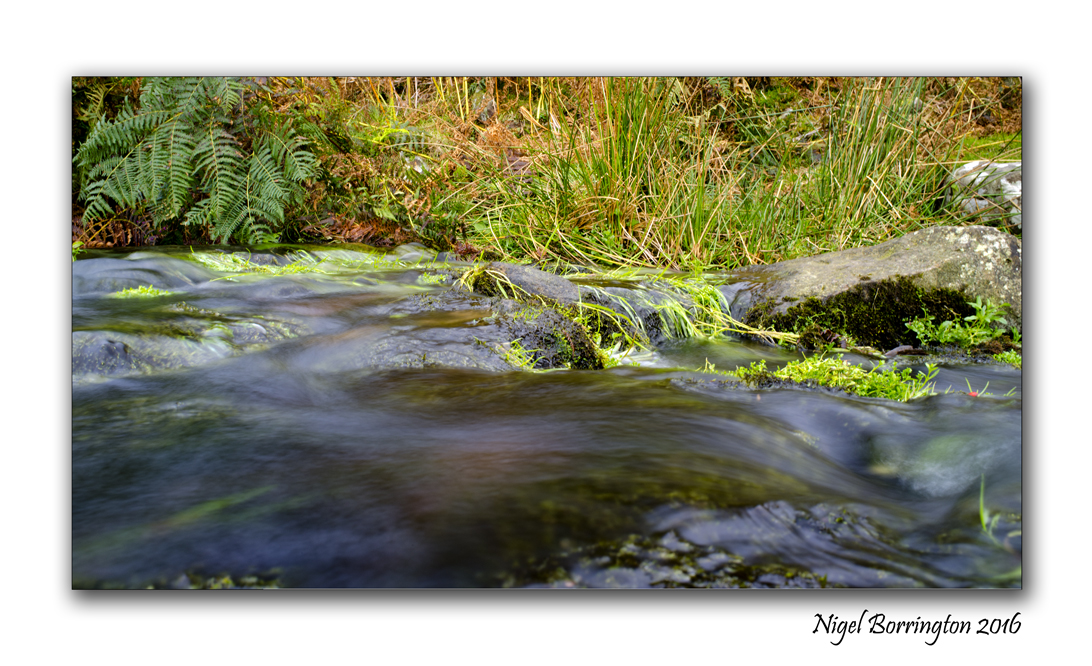flow-from-a-spring-on-the-mountain-of-slievenamon-nigel-borrington-05