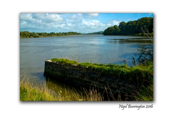 River Dawn Joins the river Suir County Waterford Nigel Borrington