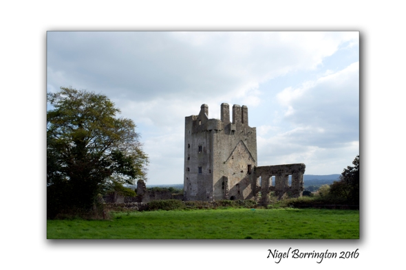irish-landscapes-kilcash-castle-nigel-borrington