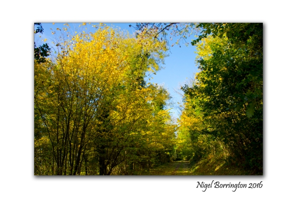 octobers-party-irish-landscape-photography-nigel-borrington-03