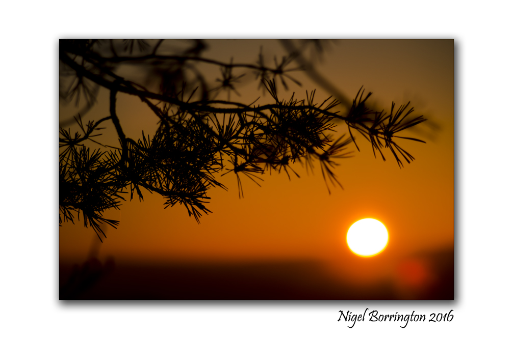 2016-novembers-last-sunset-kilkenny-ireland-nigel-borrington