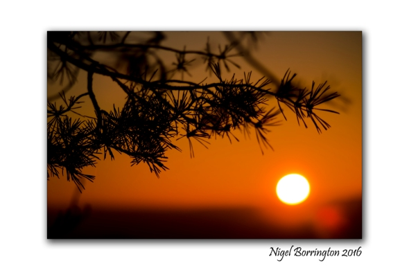 2016-novembers-last-sunset-kilkenny-ireland-nigel-borrington