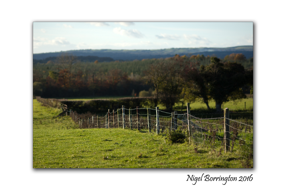 Kilkenny Landscapes Over the Fence Nigel Borrington