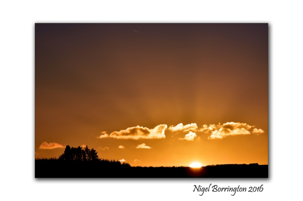 Kilkenny Landscape images Last light of the day  Nigel Borrington