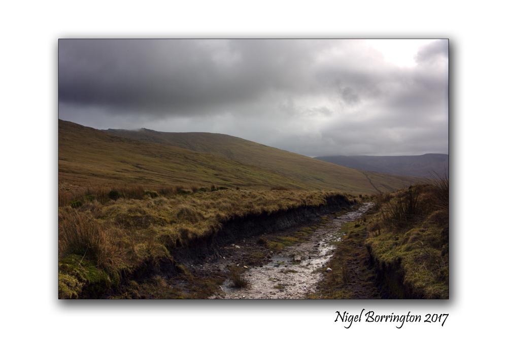 irish-bogland-02-nigel-borrington