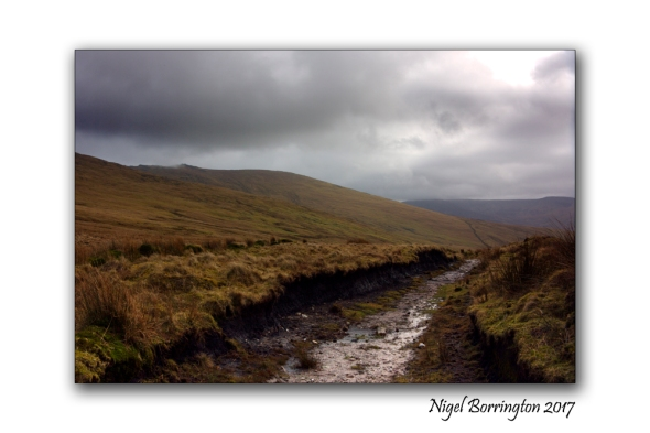 irish-bogland-02-nigel-borrington