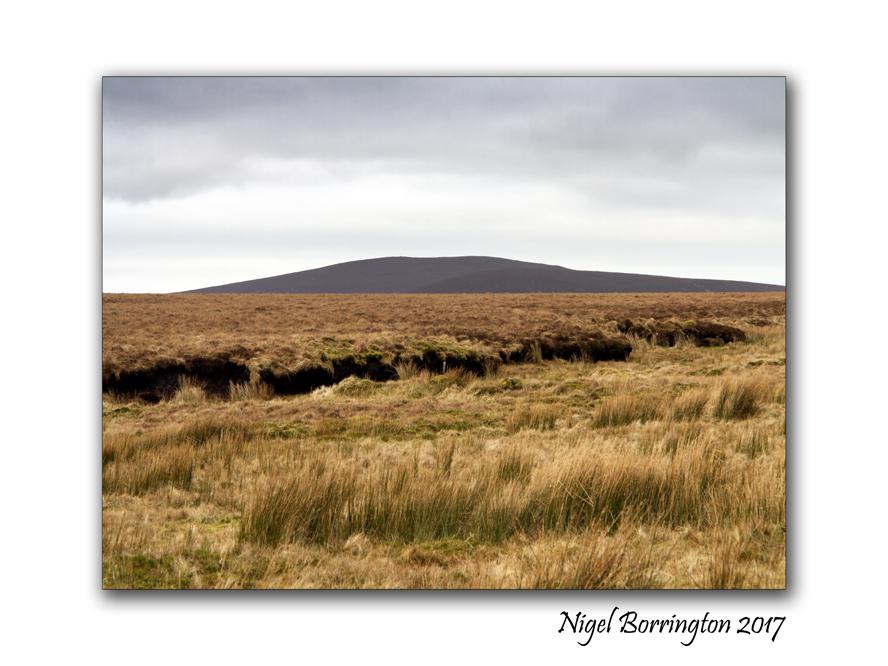 irish-bogland-03-nigel-borrington