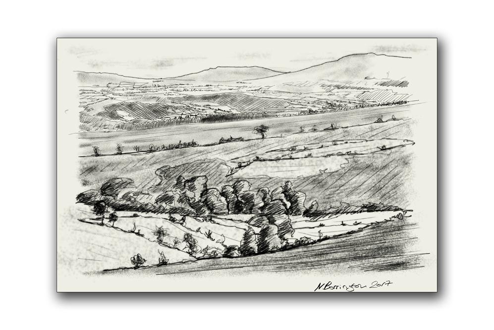 The view of boolabrien lower nier valley ireland nigel borrington
