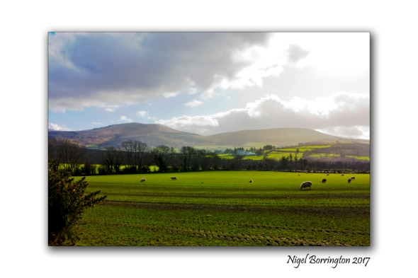 On the Farm Irish landscapes Nigel Borrington