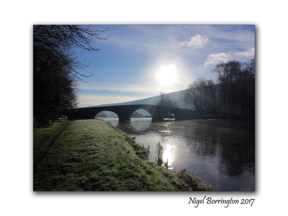 winter-by-the-river-suir-tipperary-nigel-borrington-01