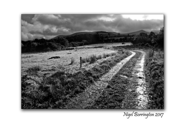Irish Landscape images March 2017 Nigel Borrington