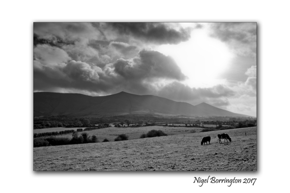 irish-landscape-images-nigel-borrington-march-2017-2