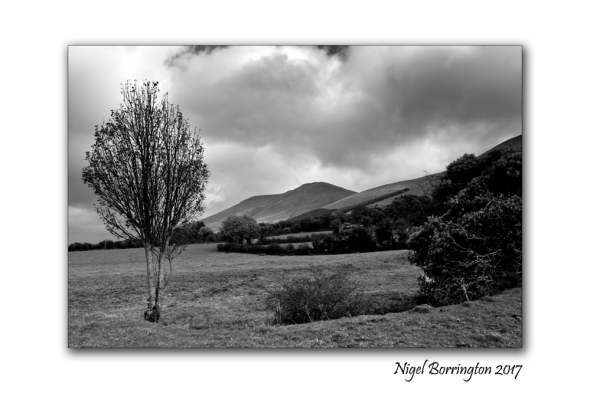 irish-landscape-images-nigel-borrington-march-2017-3